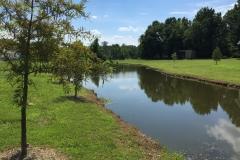 mvprentals-cedar-creek-outside
